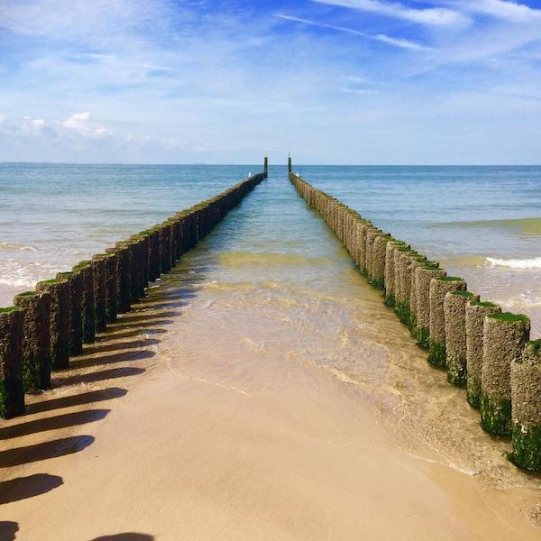 Strandpaaltjes op Walcheren